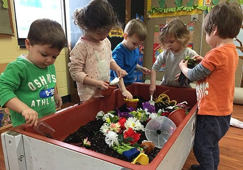Toddlers explore gardening at our preschool